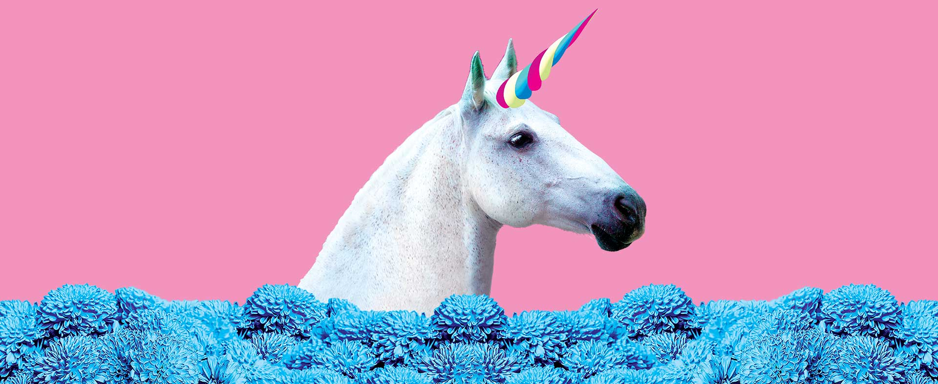 Unicorn with blue flowers