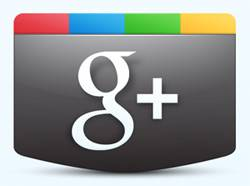 Google Plus Brands